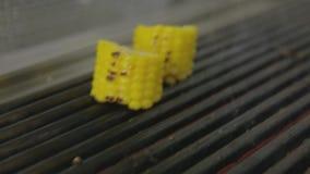 Filete asado a la parrilla con maíz metrajes