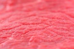 Filete crudo Foto de archivo libre de regalías