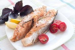 Filete de color salmón con albahaca de los tomates de cereza Imágenes de archivo libres de regalías