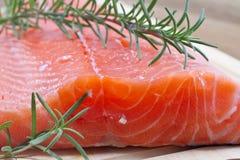 Filete de color salmón fresco imagen de archivo libre de regalías