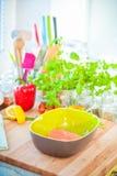 Filete de color salmón fresco en cuenco Imagen de archivo libre de regalías