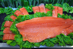 Filete de pescados de color salmón Imagen de archivo libre de regalías