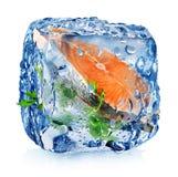 Filete de pescados en cubo de hielo Imagenes de archivo