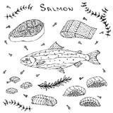 Filete, prendedero, rebanadas y sushi de los salmones rojos de los pescados para el menú de los mariscos Ilustración del vector a stock de ilustración