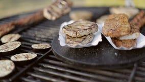 Filetes asados a la parrilla deliciosos camping metrajes