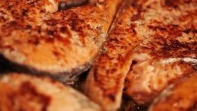 Filetes de color salmón metrajes