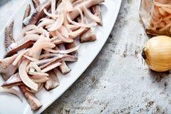 Filets de harengs à l'oignon mariné photos stock