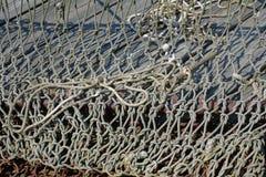 Filets de pêche de crabe sur la baie de chesapeake Image stock
