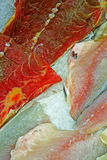 Filets de poissons à vendre Images stock