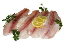 Filets de poissons Photo libre de droits
