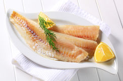Filets de poissons blancs image stock