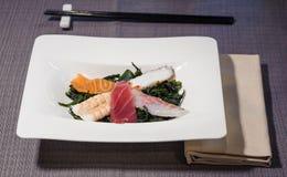 Filets de poulpe, de thon, de saumons, d'espadons et de crevette rose sur le lit de la mer Image libre de droits