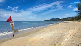Filets de Stinger aux plages de cairns photo stock