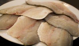 Filets of fresh sea bream stock photography
