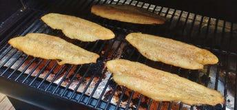 Filets marinés de tilapia sur le gril Photo libre de droits