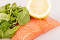 Filets saumonés crus Image stock