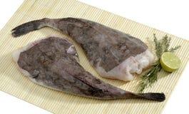 Filetti di pesce Fotografia Stock