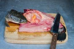 Filetto di pesce Immagine Stock Libera da Diritti