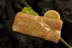 Filetto di pesce Immagini Stock