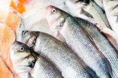 Filetto di pesce crudo su ghiaccio dello scrittorio del mercato fotografia stock