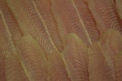 Filetto di pesce Frutti di mare freschi Pesce senza ossa Immagine Stock Libera da Diritti