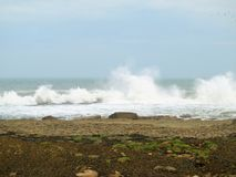 Filey双桅船挥动碰撞在岩石上 免版税库存照片