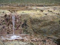 Filey布里格沿海道路 免版税图库摄影