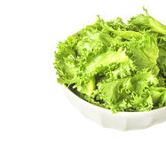 Filey Iceberg lettuce Royalty Free Stock Photography