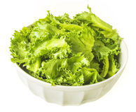 Filey Iceberg lettuce Stock Photos