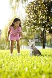 Filhote de cachorro asiático novo do treinamento da menina a sentar-se Fotografia de Stock