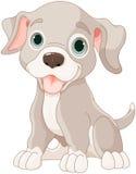 Filhote de cachorro bonito ilustração royalty free