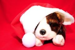 Filhote de cachorro de Santa Fotografia de Stock Royalty Free