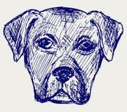 Filhote de cachorro do retrato ilustração do vetor