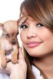 Filhote de cachorro do terrier de brinquedo Imagem de Stock Royalty Free