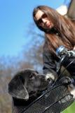 Filhote de cachorro e bicicleta da mulher fotos de stock royalty free