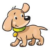 Filhote de cachorro engraçado Fotos de Stock Royalty Free