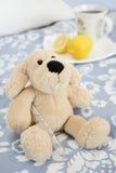 Filhote de cachorro frio Fotografia de Stock