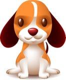 Filhote de cachorro pequeno bonito Imagem de Stock Royalty Free