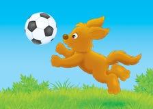 Filhote de cachorro que joga uma bola Fotos de Stock Royalty Free