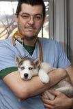 Filhote de cachorro ronco no veterinário fotos de stock royalty free