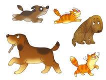 Filhotes de cachorro e gatinhos Imagens de Stock