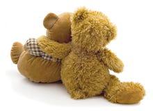 Filhotes de urso Foto de Stock