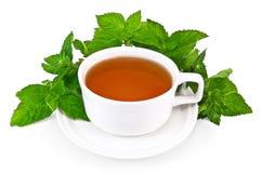 filiżanka biel ziołowy nowy herbaciany fotografia royalty free