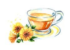 Filiżanka calendula nagietka herbata z kwiatem Akwareli ręka rysująca ilustracja, odizolowywająca na białym tle royalty ilustracja