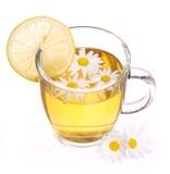 Filiżanka chamomile herbata z chamomile kwiatami odizolowywającymi cytryną i zdjęcia stock