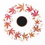 Filiżanka czarna kawa z round ramą robić jesień liście i suszący kwiaty na białym tle Mieszkanie nieatutowy, odgórny widok, kopii Fotografia Royalty Free