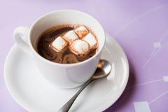 Filiżanka gorąca czekolada z marshmallows Obraz Royalty Free