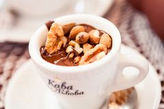 filiżanka gorącej czekolady Obrazy Royalty Free