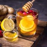 Filiżanka Gorący Imbirowi Cranberries Herbaciani z cytryną i miodem na Drewnianego tacy fotografii ręki Ciemnego Żeńskiego kwadra Fotografia Stock