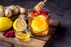 Filiżanka Gorący Imbirowi Cranberries Herbaciani z cytryną i miodem na Drewnianej tacy fotografii Ciemnej Żeńskiej ręki Horyzonta Zdjęcia Royalty Free